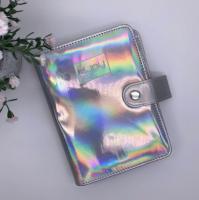 Альбом (холдер) для пластин серебро, большой
