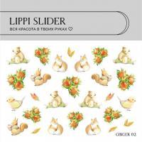Слайдер Ginger 02 LIPPI Slider